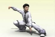 24式太极拳 3D武术 教学软件全新上市